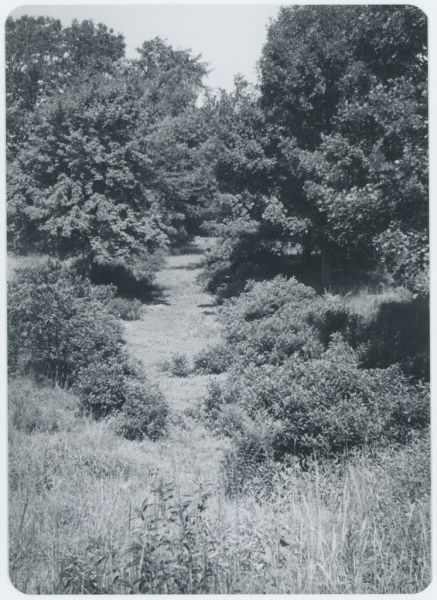 Site of Middlesex Canal